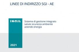 Modelli applicativi per un Sistema di Gestione integrato salute e sicurezza ambiente nelle aziende del settore energia